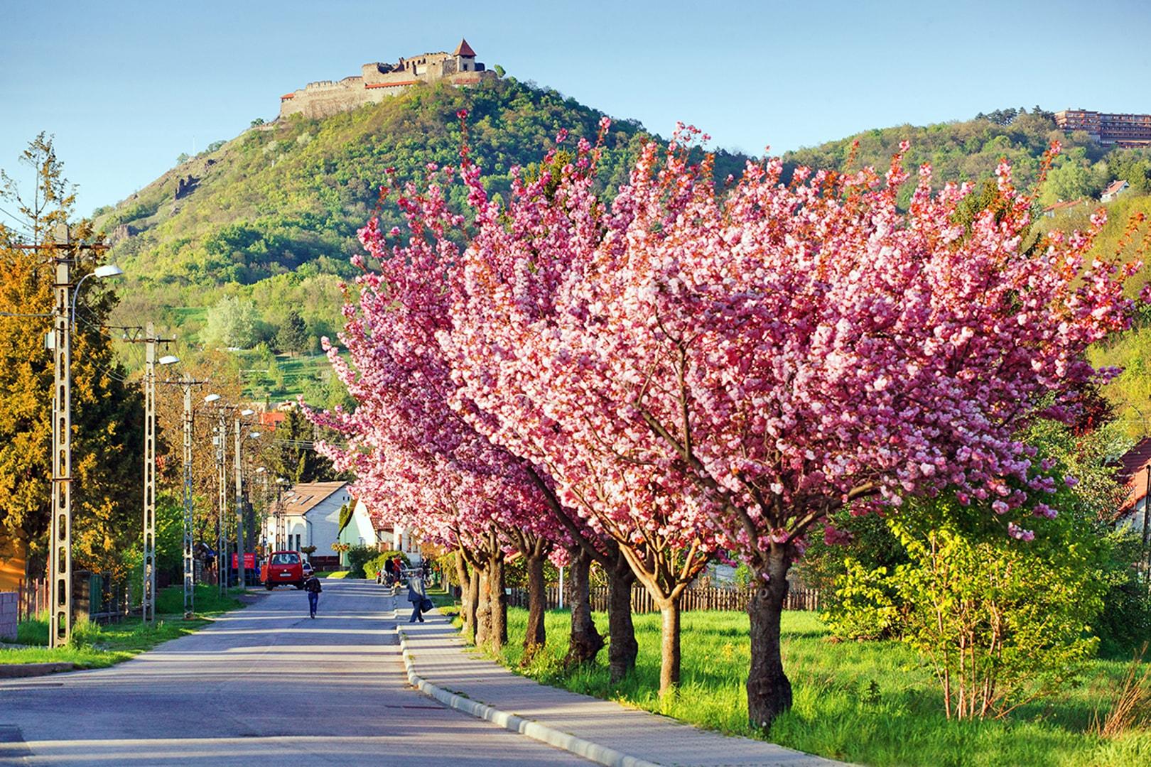 Tavaszi felfrissülés Visegrádon