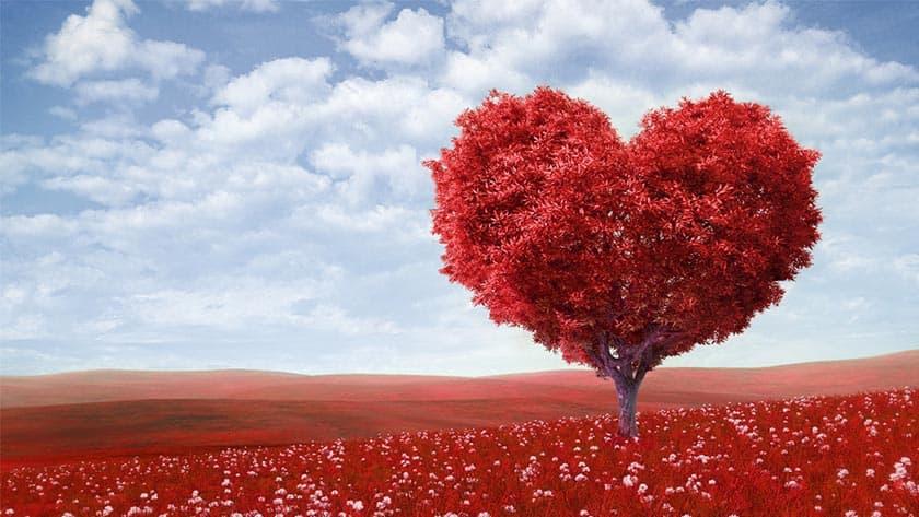 Valentin-nap a Hotel Visegrádban