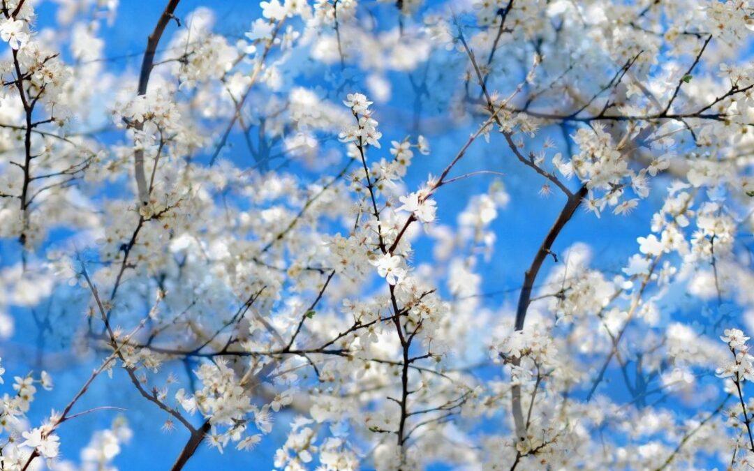 Tavaszi fáradtság ellen aktív kikapcsolódás!
