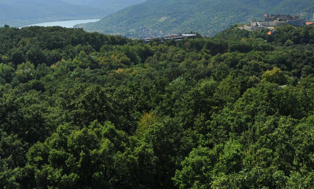 A kilátó, ahonnan elénk tárul Budapest és a főváros 100 kilométeres körzete is